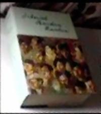 Di Bawah Bendera Revolusi, buku tebal berisi kumpulan tulisan Bung Karno.